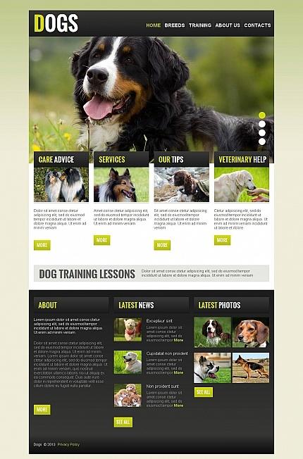 Dog Moto CMS Template #pet #html http://www.templatemonster.com/moto-cms-html-templates/43822.html?utm_source=pinterest&utm_medium=timeline&utm_campaign=dog