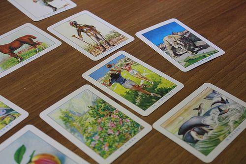 Mercante in fiera - Le carte