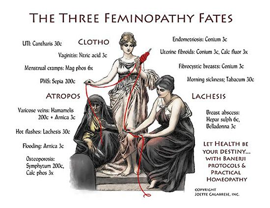 Joette Calabrese for Feminopathy. 13 ailments 13 protocols. Homeopathy.