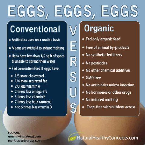 Conventional Vs. #Organic #Eggs #NonGMO