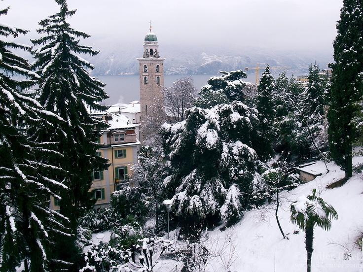 Switzerland. Canton Ticino. Lugano. Snow in the winter. Catholic church. Tall tree. 29.01.2012 © 2012 Didier Ruef..
