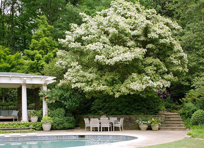 37 best brookfield garden favorites images on pinterest - Atlanta farm and garden by owner ...