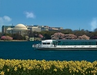 Join a cruise around the capitol and admire the cities skyline while on board this wonderful 2 hour brunch cruise. Admire unmatched skyline views from a unique vantage point while enjoying a mouth-watering feast and listening to the live jazz trio. www.partner.viator.com/en/11907/tours/Washington-DC/Washington-DC-Brunch-Cruise/d657-5042WASBRUN#