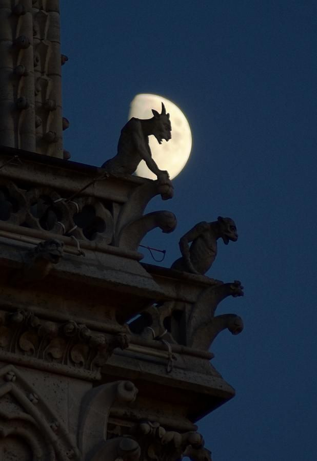 """I should note that these bigger statues, as the """"gargoyles"""" from the eponymously titled 90's cartoon, are grotesques.  Gargoyles, as root association with """"gargle"""" hints, spout water; one can be seen center left, at the appropriate level."""