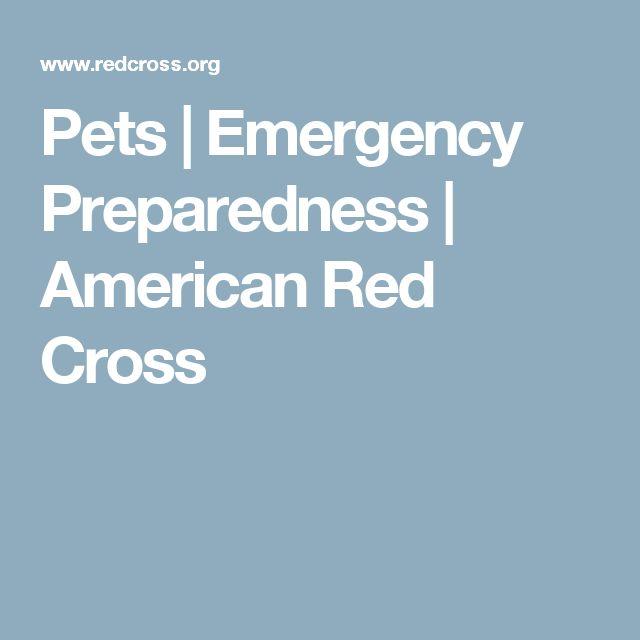 Pets | Emergency Preparedness | American Red Cross