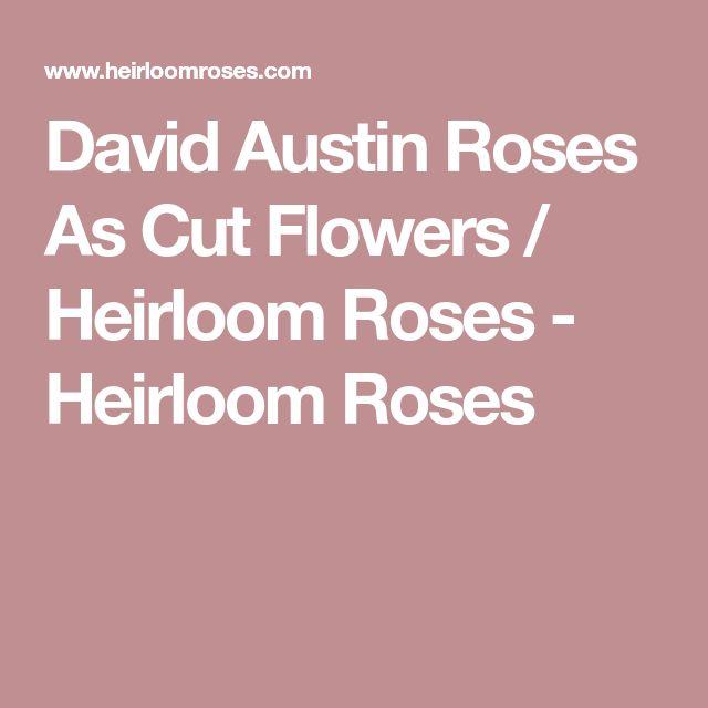 David Austin Roses As Cut Flowers / Heirloom Roses - Heirloom Roses