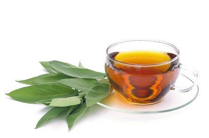 Tee - Bei Halsschmerzen hat sich das Gurgeln von Salbeitee bewährt. Denn die ätherischen Öle wirken entzündungshemmend. Wichtig ist, den Tee ausreichend (ca. 15 Minuten) ziehen zu lassen – egal ob Sie zu fertigen Teemischungen greifen oder den Tee selbst aus frischen Salbeiblättern zubereiten (2 TL Salbeiblätter mit 500 ml heißem Wasser aufgießen). Mehrmals am Tag für mindestens fünf Minuten gurgeln.