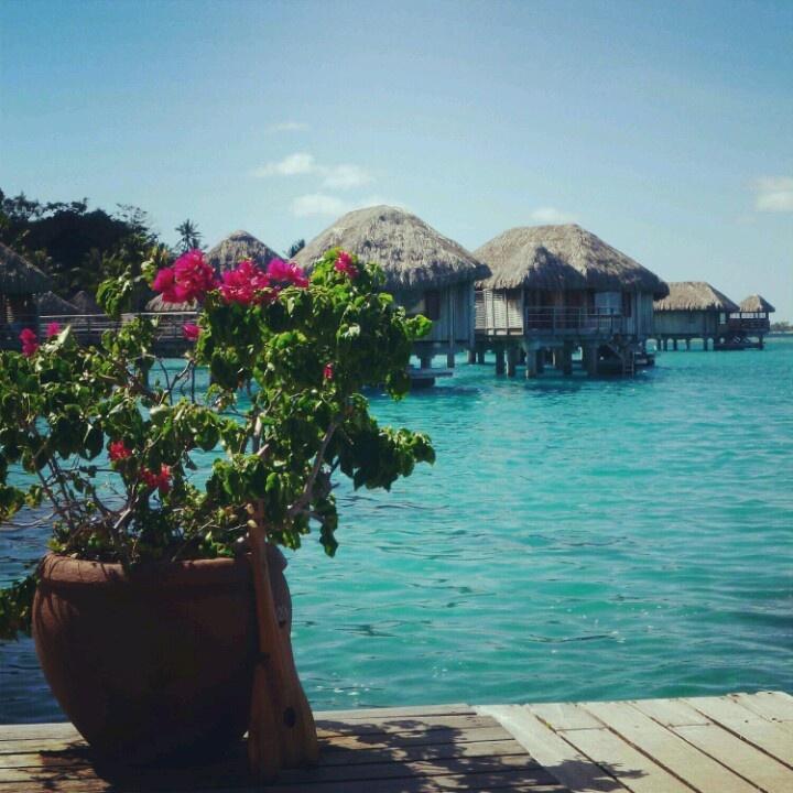 Tahiti Accommodation Over Water Bungalows: Best 25+ Moorea Tahiti Ideas On Pinterest