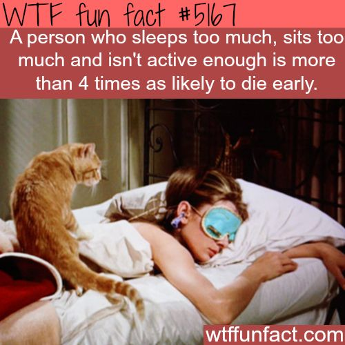 WHOA! ...People who sleep too much, sit too much, not active, 4 TIMES as likely to DIE EARLY?  ~WTF NOT-a-fun fact!
