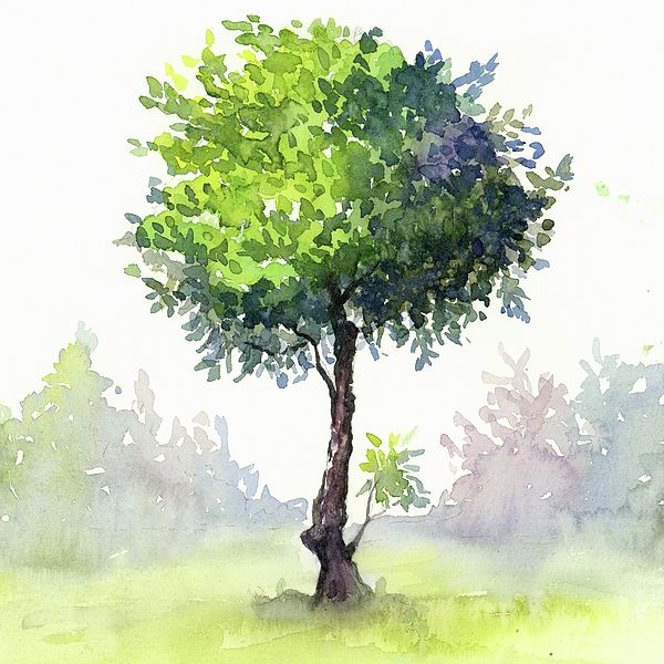 Tree Study By Zapista Ou Metal Tree Wall Art Tree Study Tree