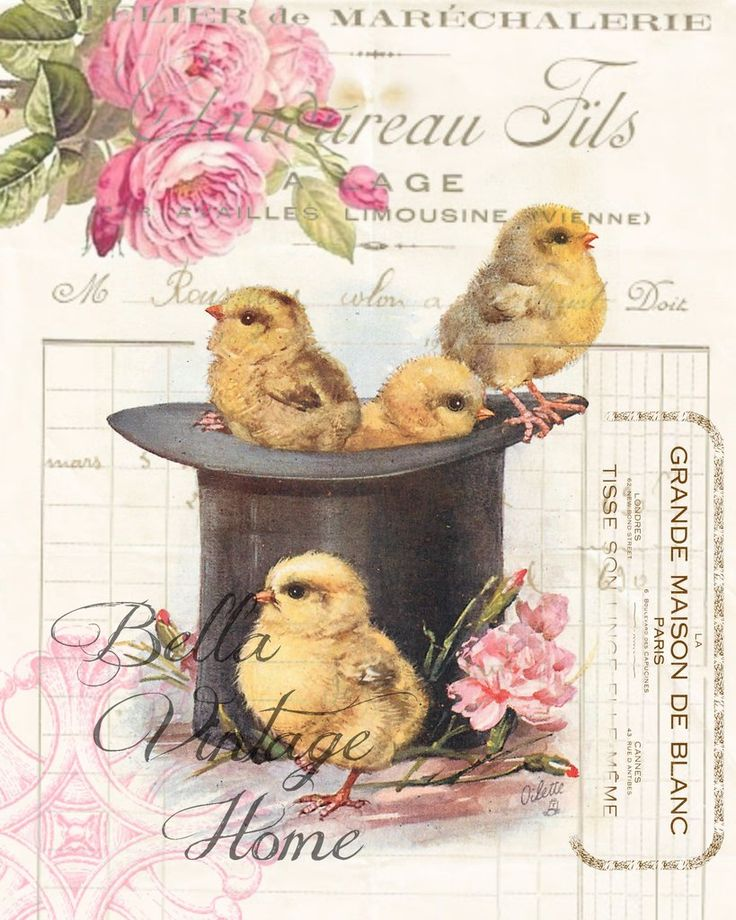 Top Hat Chicks Chicks Print,  Pillow, Note Cards, Tea Towel