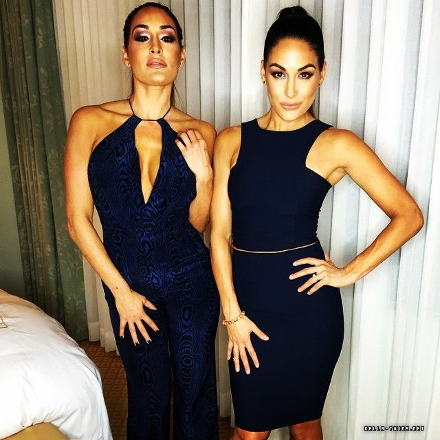 Last additions - 10963978 866152596775769 1307989266 n - DOUBLE GLAMOUR // Your largest Brie & Nikki Bella Photo Archive, with over 170,000 photos