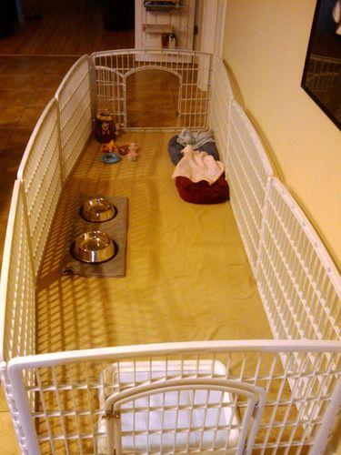 Customer Image Gallery For Iris Ci 604 Indoor Outdoor