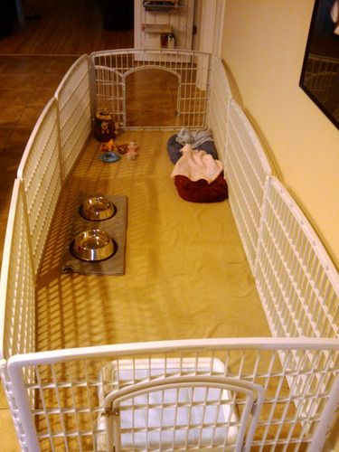 Customer Image Gallery for Iris CI-604 Indoor/Outdoor Plastic Pet Pen, 4 Panels