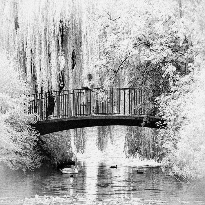 Idyllic Bridge b+w infrared by MichiLauke