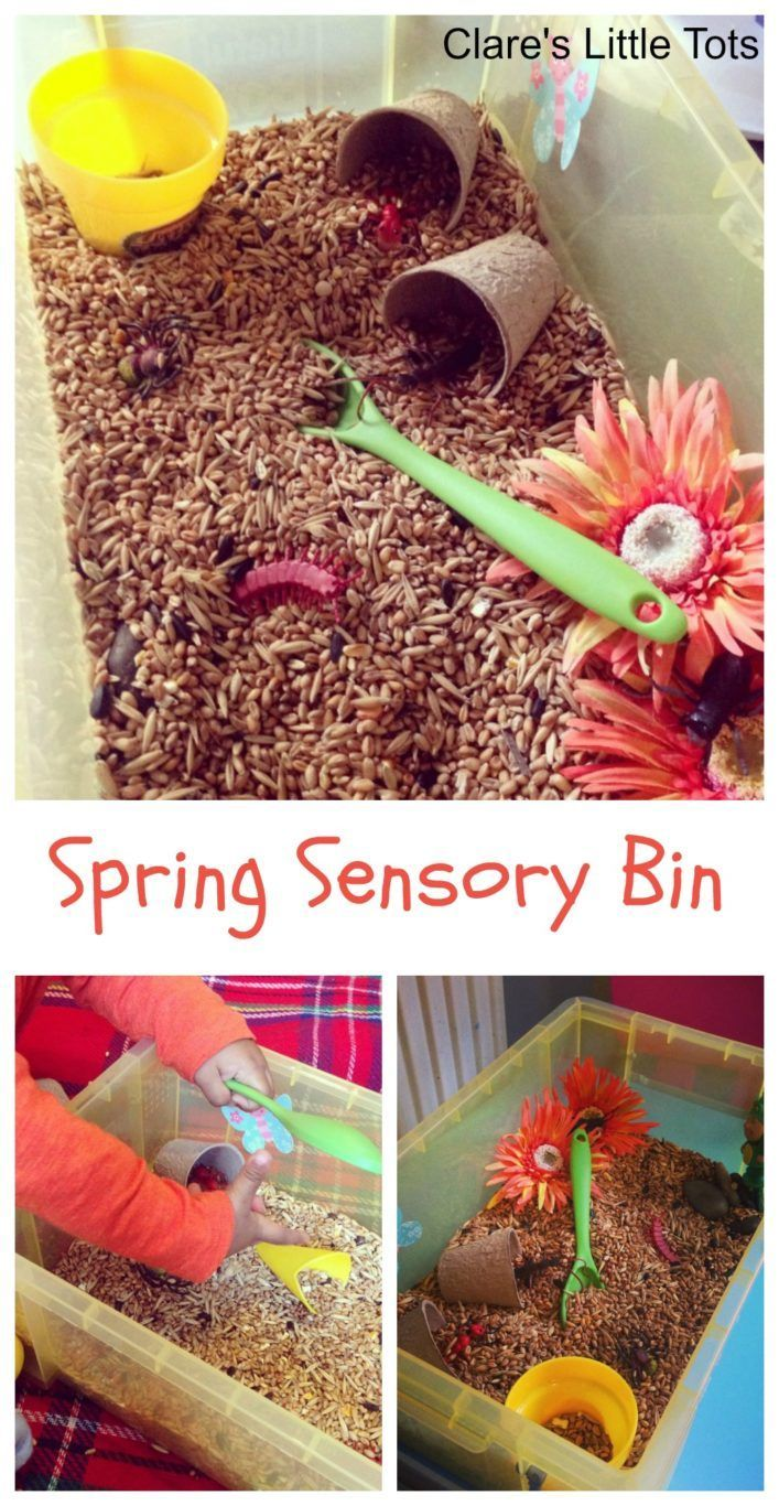 Fun Spring Sensory Bin for toddlers and preschoolers. Let little hands explore this spring sensory play idea using bird seeds. Great of imaginative play and messy play.