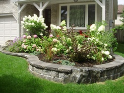 After front yard garden