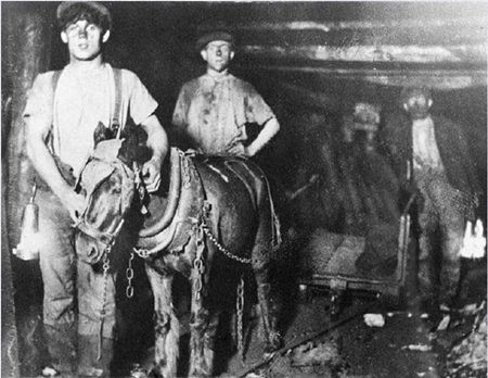 ponies in the coal mines | Coal Miners and Pit Pony
