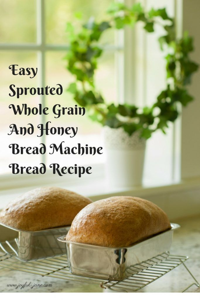 THM Easy Sprouted Whole Grain and Honey Bread Machine Bread (E) - Joyful Jane