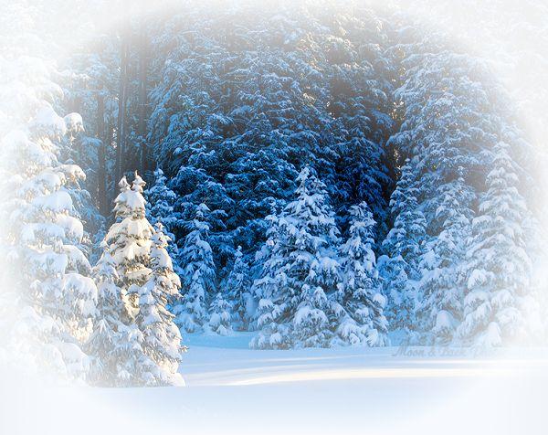 Рамочки Рождественские | Записи в рубрике Рамочки Рождественские…