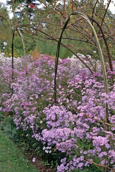 Les 26 meilleures images propos de jardins du loiret sur for A propos du jardin