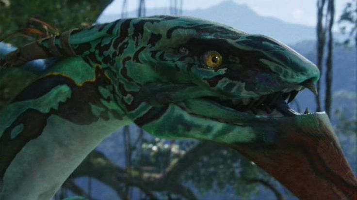 Google Image Result for http://images2.wikia.nocookie.net/__cb20100618202447/jamescameronsavatar/images/f/ff/Seze_01.jpg