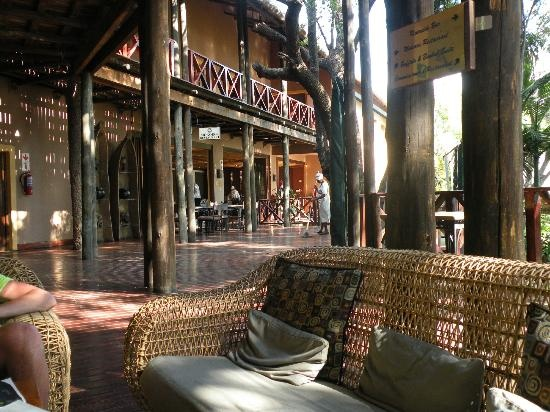 Chobe Marina Lodge in Botswana near Victoria Falls