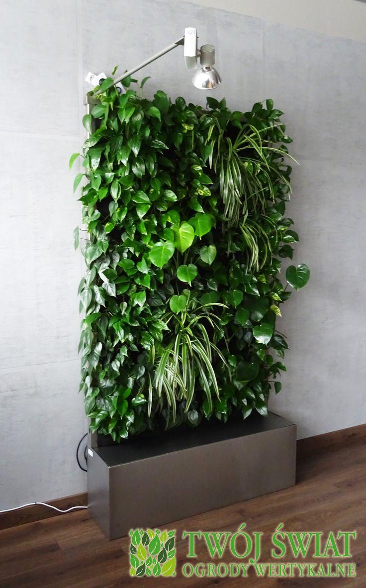 Mobilny ogród wertykalny. #verticalgarden #zielonesciany #plantsonwall