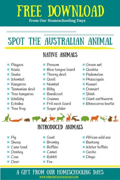 Australian animal checklist game-great for travellers, a unit study or fun activity.