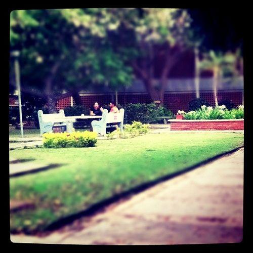 Universidad del Zulia
