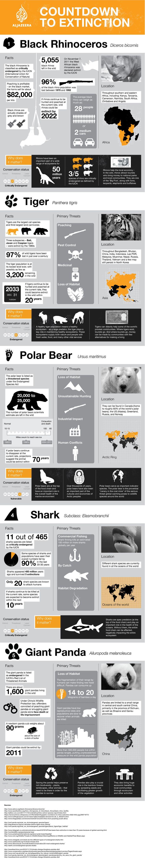 Countdown to extinction - Wildlife Warzone - Al Jazeera English