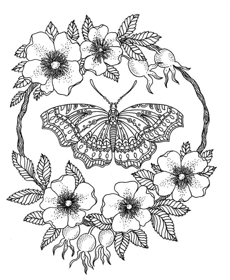 Las mejores +400 imágenes de Mariposas 01 en Pinterest | Dibujado a ...