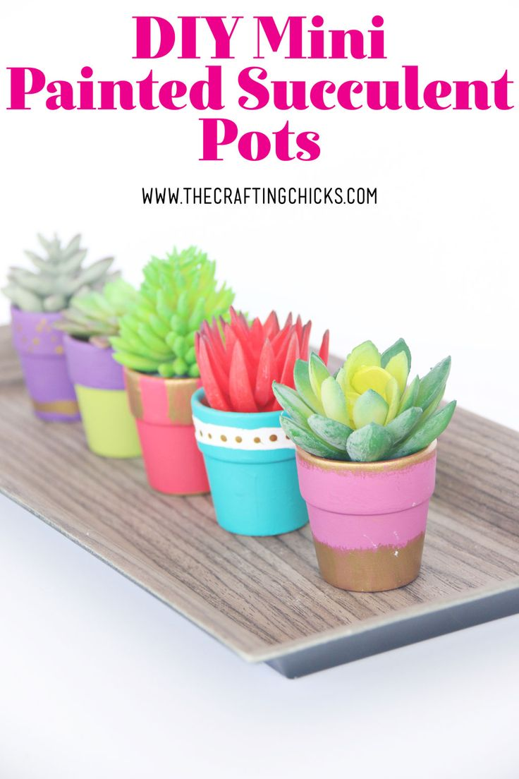 DIY Mini Painted Succulent Pots - Add a pop of color to your decor with these adorable DIY Mini Painted Succulent Pots. An awesome compliment for a Cinco de Mayo party or as a gift idea.