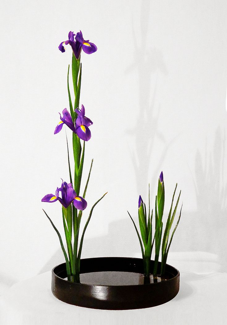 Икебана Ikebana