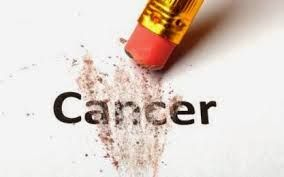 Obat Alami Mencegah Penyakit Kanker