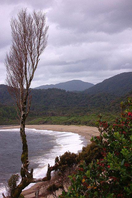 Pacific Beach north of Cole-Cole beach, near Parque Nacional Chiloe, Chile