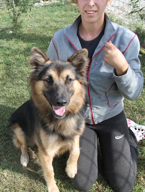 Lampo was adopted.. in a flash! / Lampo fu adottato, in un flash!