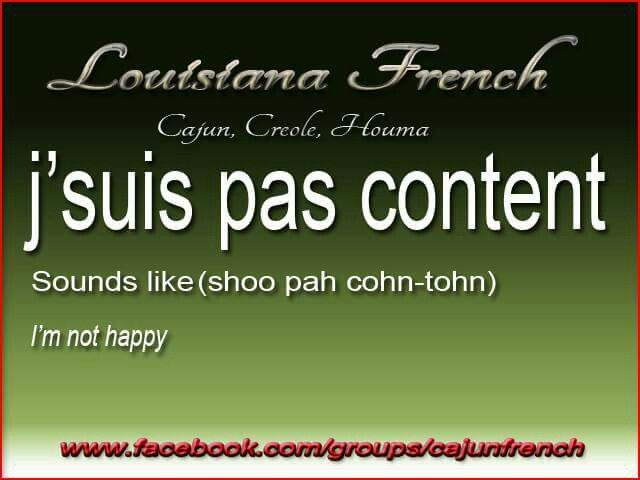 495 best cajun images on pinterest cajun french french creole and cajunfrench m4hsunfo