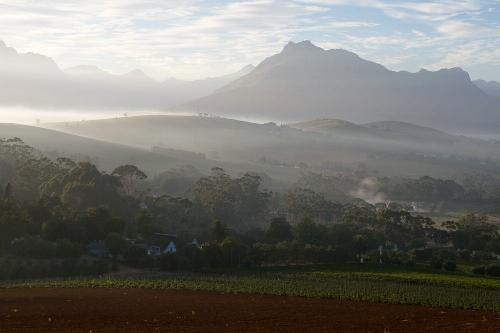 Stellenbosch region near Cape Town - where you will be living and studying in this beautiful area!