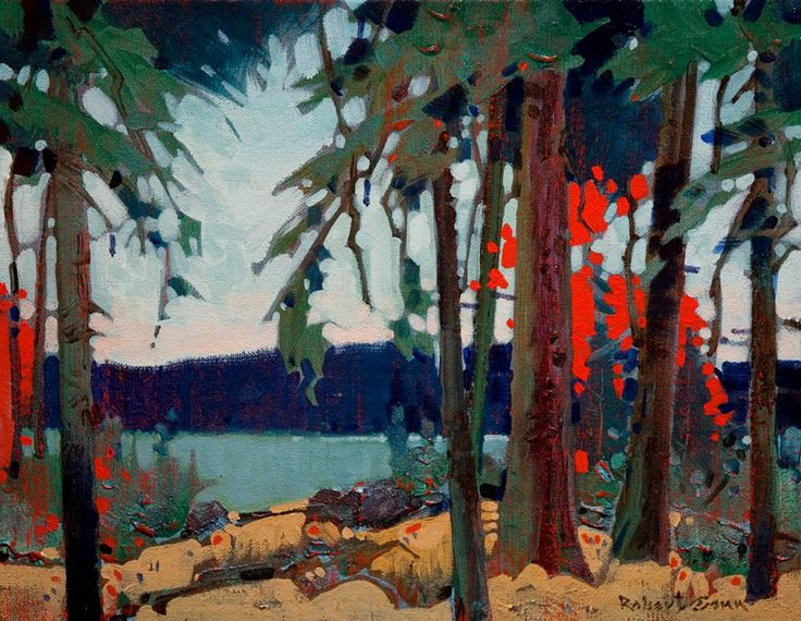 Pattern at French Narrows, Lake of the Woods, by Robert Genn