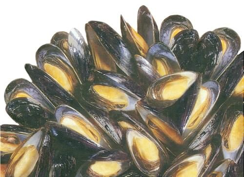 PEI Mussels are the very best anywhere!