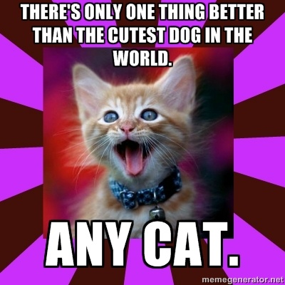 """debate opening for dogs are better than cats How to write an argumentative essay • start with an opening hook to catch your readers if your thesis will argue that """"cats are better than dogs,."""