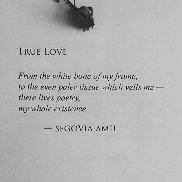 """True Love"" written by Segovia Amil, #segoviaamil #poetry #segoviaamilpoetry #writing #writer #feminism #poetess #poet #prose #writersofinstagram #poetsofinstagram #excerpt #literature #prosepoetry #poem #lovepoem #Love"