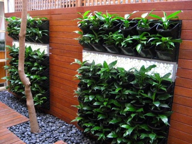 Vertical gardens can be an alternative to insufficient space in your yard. Spring is fast approaching, so soon you can start to prepare your garden to cult