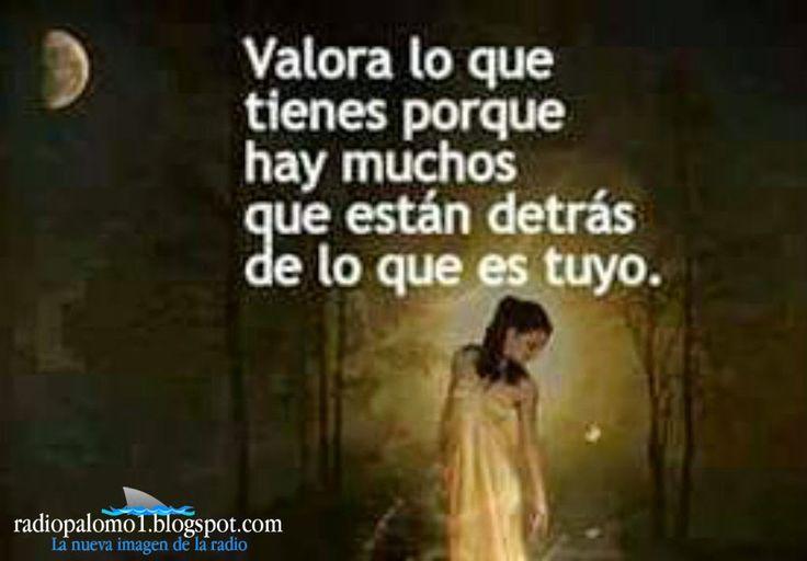 Nadie sabe lo que tiene hasta que lo ve perdido.... ~ Radio Palomo | Mis Imagenes | Pinterest ...