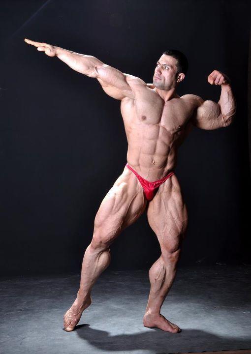 Resultado de imagem para mehdi hatami bodybuilder