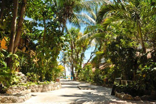 Hotel Colibri Beach Detailed Information - officialpethotels.com