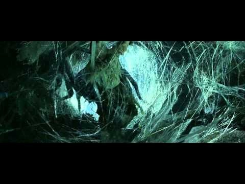 shelob and gollum relationship