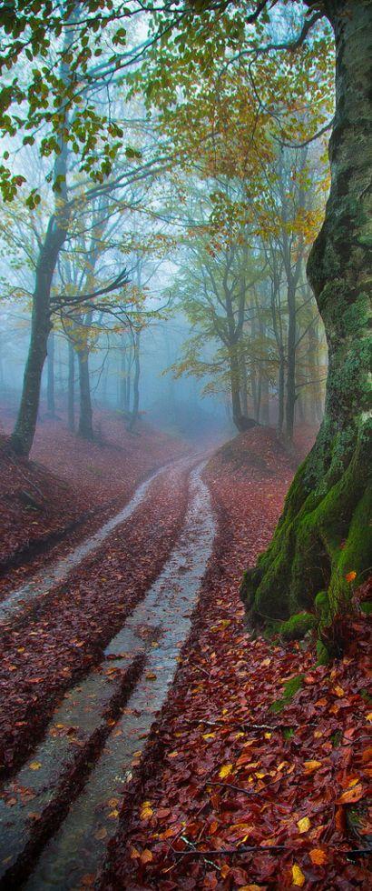 Landscape Photography Tips: David Butali