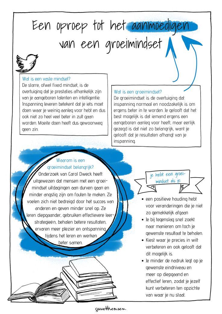 Mindset uitleg poster. Deze is gratis te downloaden via de gratis content academie van GaveMensen: http://gavemensen.nl/gratis-content/